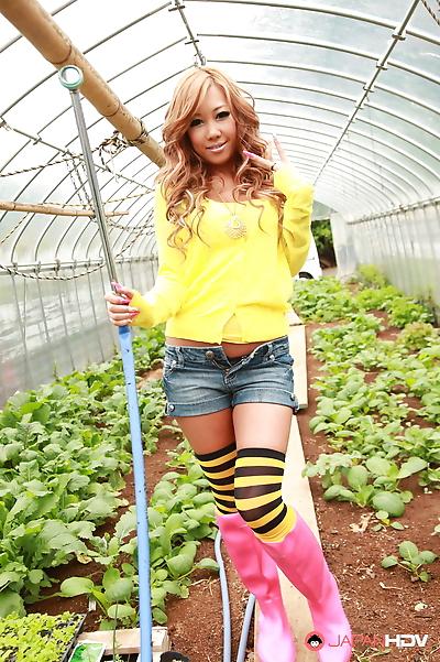 Farmer girls raina ogami and rara - part 2794